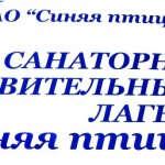 IMG_17321